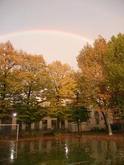 5-nidiaci-arcobaleno